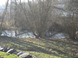 """Kirkland Highlands """"secret"""" pond"""