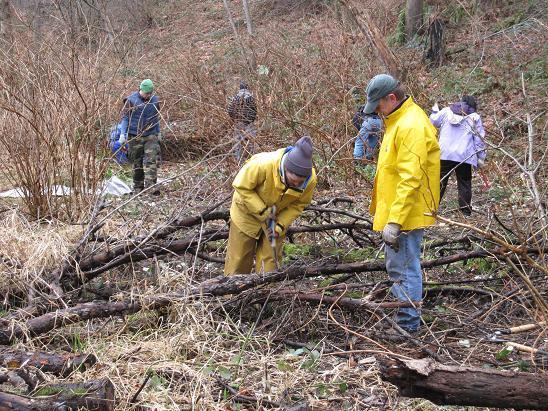 kirkland-cotton-hill-park volunteers at work