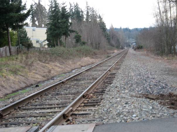 Rail to Trail in Kirkland